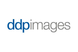ddp images GmbH